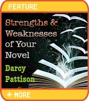 Strengths and Weaknesses of Your Novel - Darcy Pattison