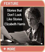 Stories That Don't Look Like Stories by Elizabeth Harris