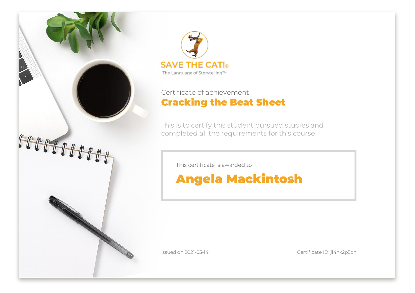 Cracking the Beat Sheet Course Certificate